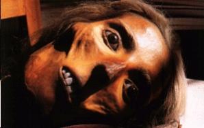 Foto di un busto e di una testa pietrificati da Girolamo Segato attualmente custodito all'Università di Firenze